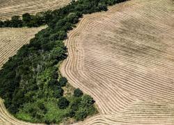 63% mamme italiane pensa che prendersi cura dell'ambiente sia costoso