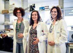 """Vaccini donne incinte, immunologa Viola: """"Dati Usa confermano quello che sapevamo"""""""