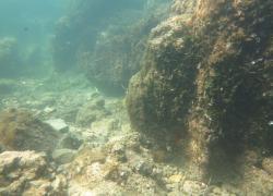 """Scoperte vasche romane nelle acque di Baia.   Avilia: """"risalgono alla prima età augustea"""""""