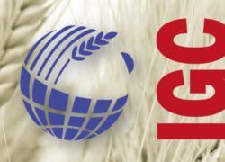 International Grains Conference 2021