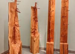 'Alberi in versi', alle Gallerie degli Uffizi la mostra di Penone ispirata a Dante