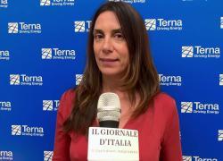 """Terna, Bosetti: """"Nella transizione ecologica mettere al centro l'essere umano e i suoi bisogni"""""""