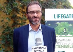 """LifeGate, 7° Osservatorio.  Do (Michelin Italia): """"Abbiamo ridotto le emissioni del 44% dal 2010"""""""
