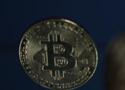 Torna a salire il bitcoin, la criptovaluta a 50mila dollari
