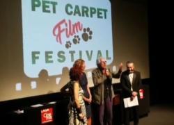 Torna il Pet Carpet film festival, le storie del mondo animale