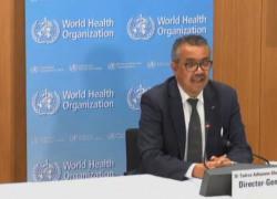 Oms approva il primo vaccino contro la malaria per uso diffuso