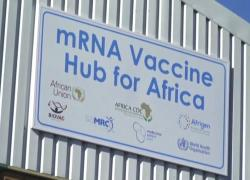Covid, il Sudafrica lavora al primo vaccino a mRNA del continente