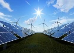 Terna, AD Donnarumma: le grandi aziende per transizione ecologica