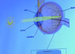 La terapia genica fa riacquistare la vista a 10 bambini