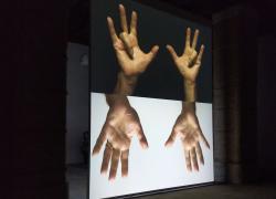 Biennale di Venezia: alla scoperta dei padiglioni e delle mostre da non perdere