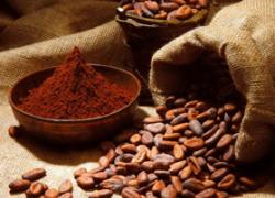 Ferrero implementa programma nella filiera del cacao