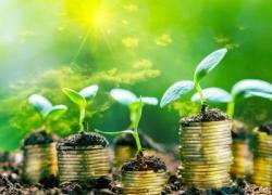 Green Finance, domani webinar del Centro Studi Americani