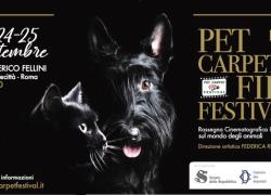 A Cinecittà il 'Pet Carpet Film Festival', cortometraggi sul mondo animale