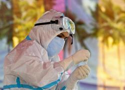Covid, superati i 240 milioni di contagi nel mondo da inizio pandemia