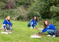 Dipendenti Philips al Parco Nord Milano per piantare 250 alberi