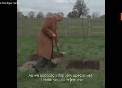 Il principe Carlo pianta un albero per il Giubileo di Platino della regina Elisabetta