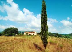 Estate, boom per le case vacanze in Italia