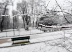 Previsioni meteo: neve in pianura. Roma imbiancata nelle prossime ore