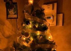 Natale 2020, albero e presepe: quanto costano in bolletta